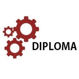 Diploma (2 Years Program)